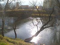 Image688